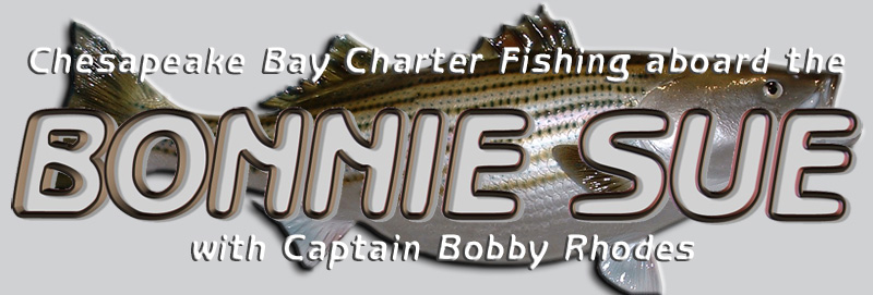 Chesapeake Bay Charter Fishing aboard the Bonnie Sue with Captain Bobby Rhodes